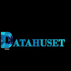Datahuset-logo-datahus.se